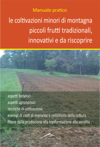 Copertina Manuale Pratico (2015)